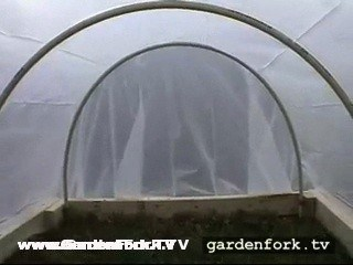 the view of the cold frame hoop house from inside.