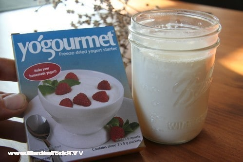 Yogourmet works better than just using yogurt as starter, i think.