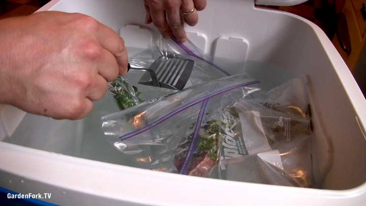 removing air from sous vide bags in beer cooler