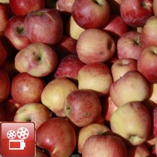 How To Make Applesauce Recipe