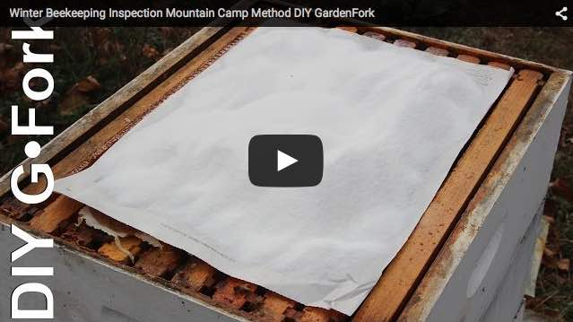 mountain-camp-feed