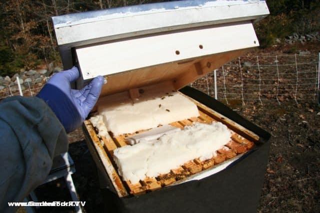 Insulated Inner Cover Beekeeping 101 Gardenfork Tv Diy
