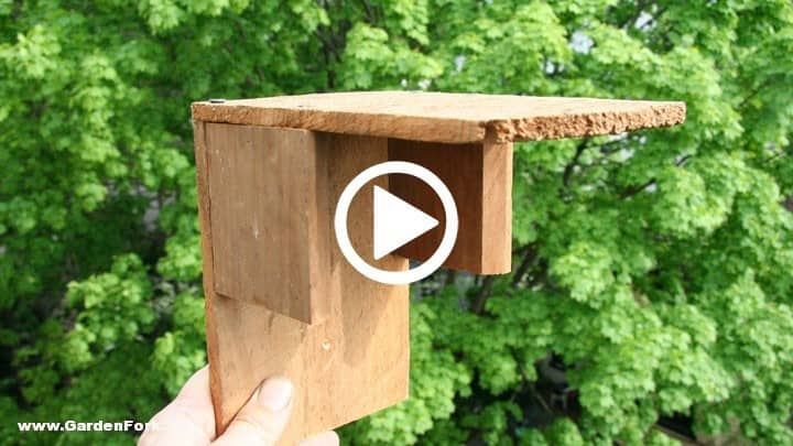 Build a simple ledge nest birdhouse gf tv video for How to make homemade bird houses