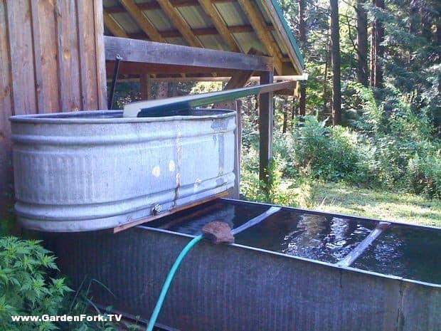 simple rain barrel plans gardenfork tv diy living