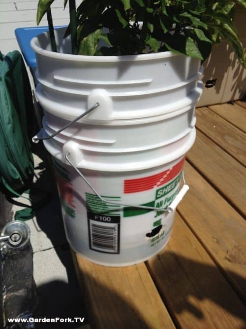 Self Watering Pots For Rooftop Garden Gardenfork Tv