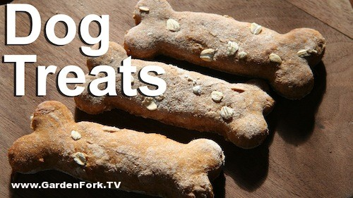 dog-treat-recipe-sweet-potato-dog-biscuits-2