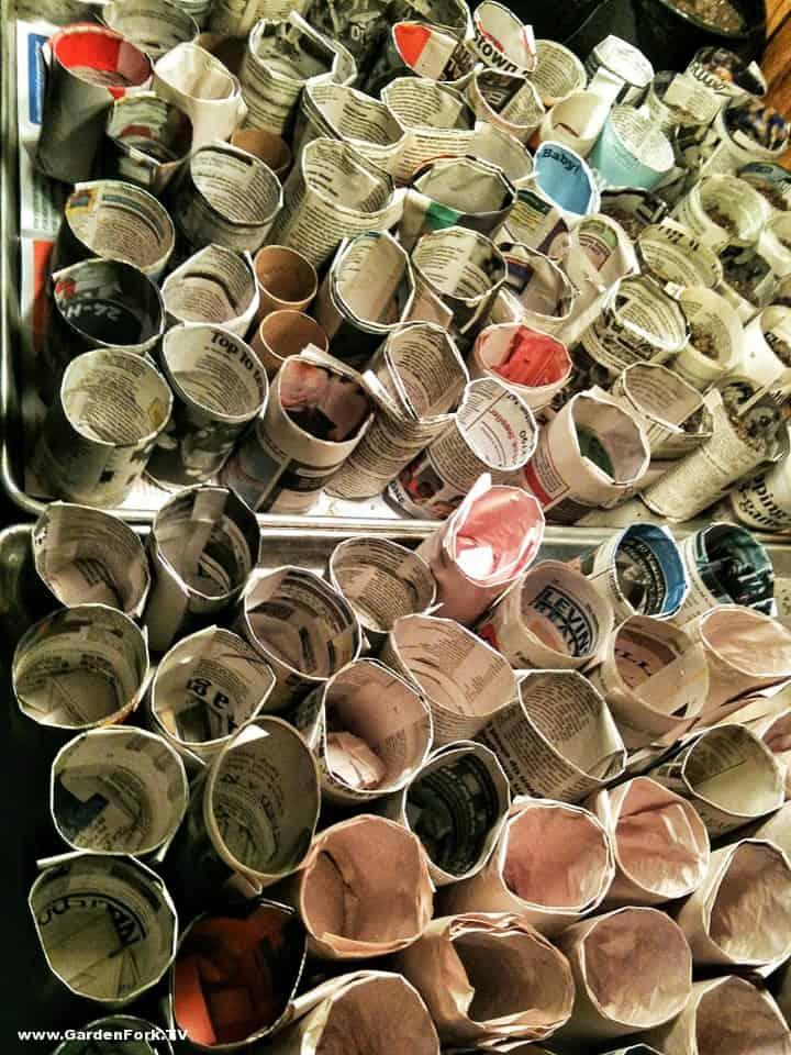 paper pots by Rich
