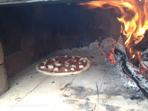 wood-fired-pizza-oven-photos-4