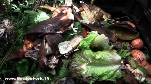composting-101-backyard-composting-basics-2