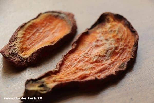 sweet-potato-dog-treats-recipe-1