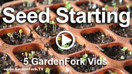 5-great-seed-starting-how-to-videos2