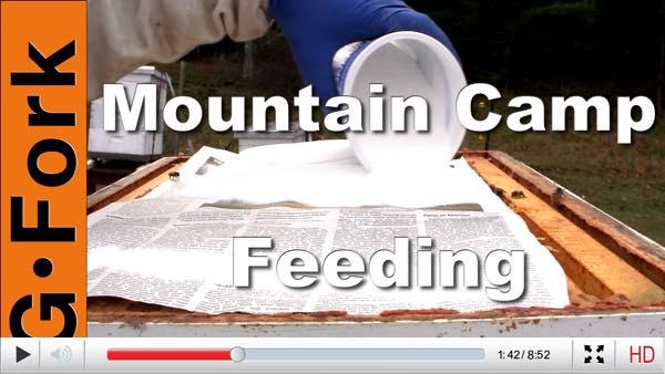 mountain-feeding-sugar-beekeeping-play