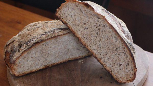 oatmeal no knead bread recipe