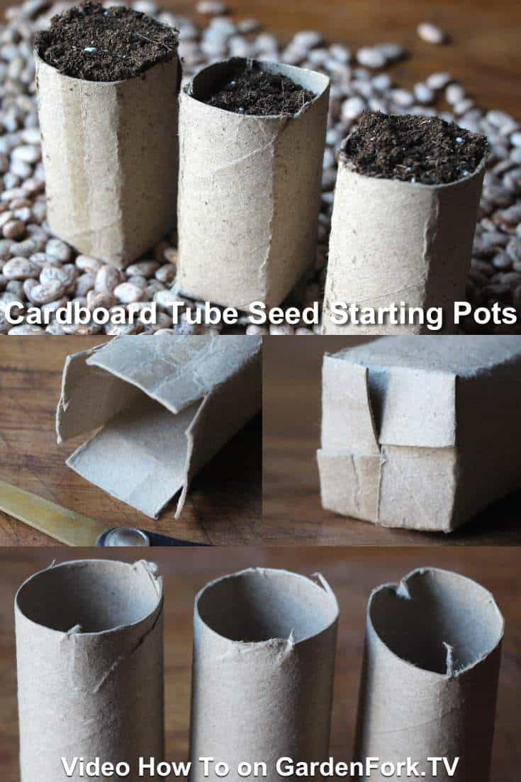 cardboard seed starting pots