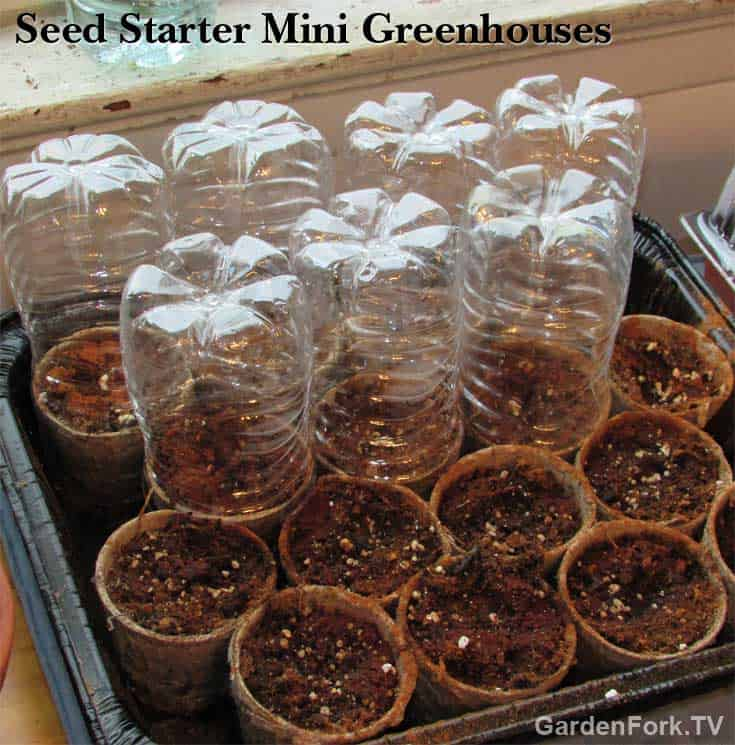 mini-greenhouse-seed-starting-pots