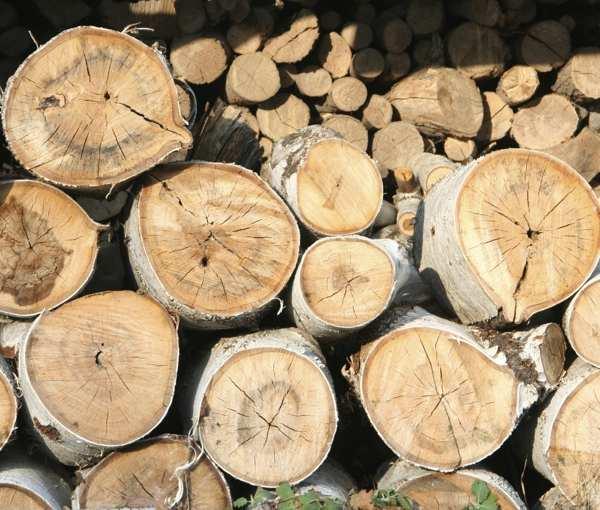 split-wood-with-an-axe-1