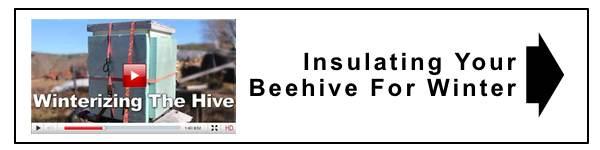 watch beekeeping videos insert