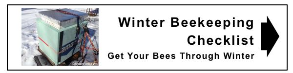 Prepare your bees for the cold with this winter beekeeping checklist