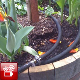 drip irrigation for a container garden