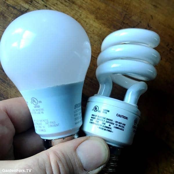 LED vs CFL lights